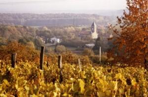l'église de Lorry depuis les vignes