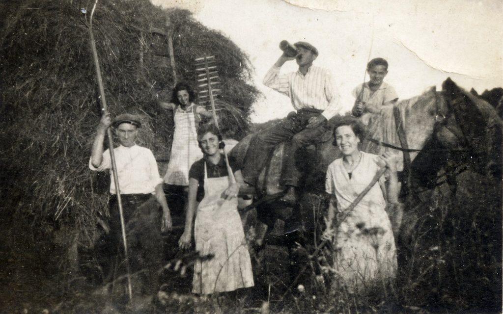 Fenaison 1935 environ